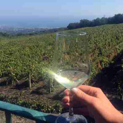 etna wine tour excursions