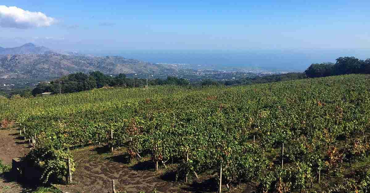 Image result for volcano etna 2018