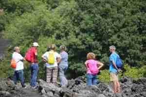 etna morning tour group