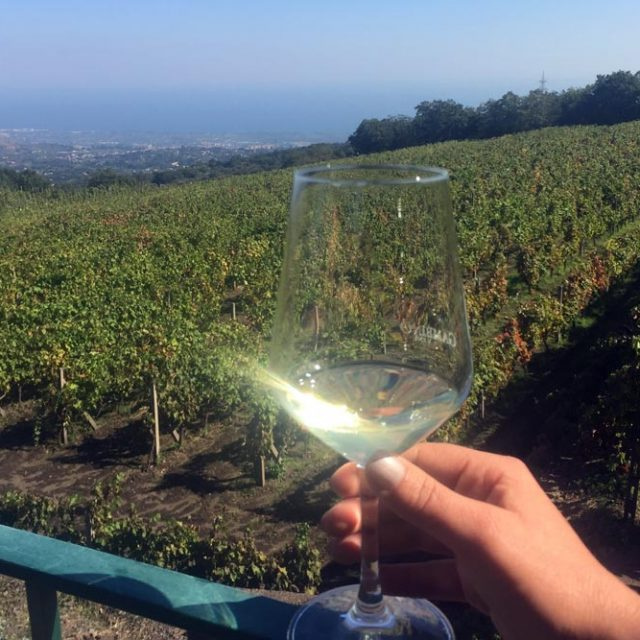 etna wine tour group